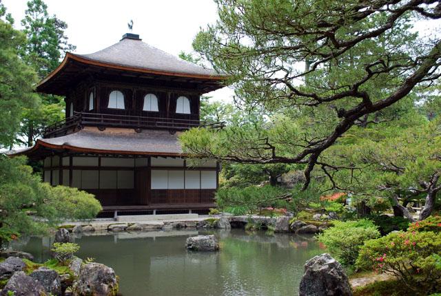 Le origini della cha no yu la cerimonia del t giapponese - I giardini del te ...